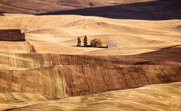 Palouse Valley in the fall stock images