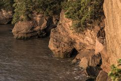 Sunrise famous Hopewell Rocks geologigal formations at low tide biggest tidal wave Fundy Bay New Brunswick Canada Stock Photo