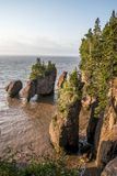Sunrise famous Hopewell Rocks geologigal formations at low tide biggest tidal wave Fundy Bay New Brunswick Canada Stock Photography