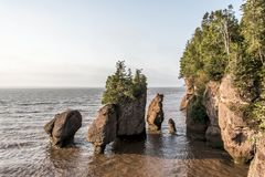 Sunrise famous Hopewell Rocks geologigal formations at low tide biggest tidal wave Fundy Bay New Brunswick Canada Royalty Free Stock Photography