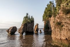 Sunrise famous Hopewell Rocks geologigal formations at low tide biggest tidal wave Fundy Bay New Brunswick Canada Royalty Free Stock Images