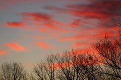 Sunrise on the farm Royalty Free Stock Images
