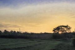 Sunrise on the farm. Field view sunrise Stock Photography