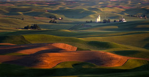 Sunrise on Farms, Palouse, Washington Royalty Free Stock Photo