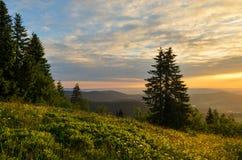 Sunrise Feldberg, Black Forest Stock Photography