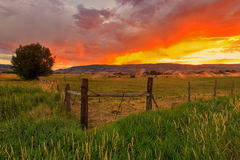 Sunrise fence and field landscape in the Wasatch Mountains, Utah. Royalty Free Stock Photography