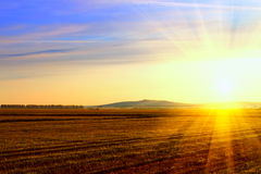 Sunrise in the field Stock Images