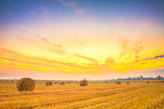 Sunrise field, hay bale in Belarus. Royalty Free Stock Image