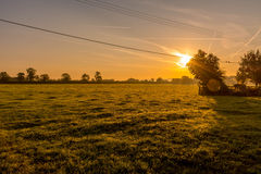 Sunrise on field. Sunrise, , morning dew and mist that rises from the fields Royalty Free Stock Images