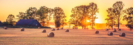 Sunrise field panorama stock photography