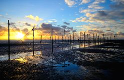 Sunrise through the fish traps Stock Images
