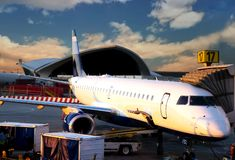 Sunrise flight Stock Images
