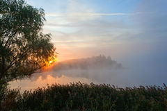 Sunrise in the fog. Autumn. Foggy start a good day on the lake Stock Photography