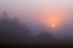 Sunrise through the fog Royalty Free Stock Images