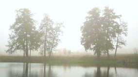 Sunrise fog lake water. Sunrise over fog lake in the forest stock footage