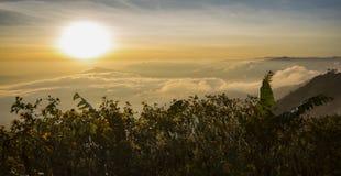 Sunrise on the fog mountain Stock Images