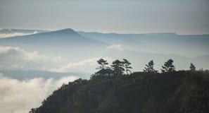 Sunrise on the fog mountain Stock Photography