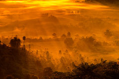 Sunrise, Fog and ray on the hill Stock Images