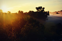 Sunrise with Fog Stock Photography