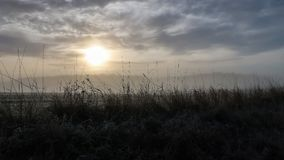 Sunrise in a foggy landscape royalty free stock photography