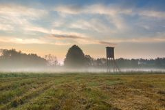 Sunrise on foggy meadow with raised hide Royalty Free Stock Images