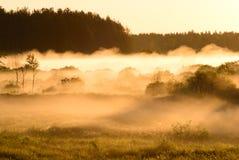 Sunrise on foggy morning Stock Photography
