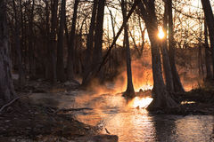 Sunrise: Foggy River Stock Image