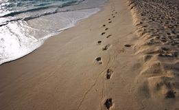Sunrise footprints on the shor Stock Images