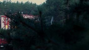 Sunrise in the forest dolly shot cam, time lapse stock video footage
