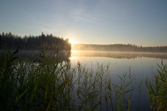 Sunrise on the forest lake misty morning. Finland Stock Image