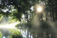 Sunrise on the forest river Royalty Free Stock Image