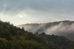 Sunrise through forested hills shrouded by fog Stock Photos