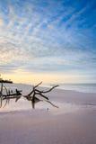 Sunrise at Fort Myers beach. Stock Photos