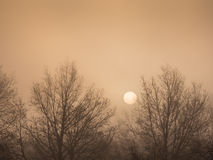 Sunrise on a frosty morning Royalty Free Stock Photography