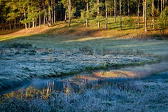 Sunrise at frozen meadow stock images