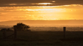 Sunrise Gateway. Gateway opened to let a new day begin over New Zealands wonderful farm land Royalty Free Stock Images