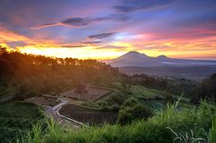 Sunrise Gedong Songo Temple Royalty Free Stock Photos