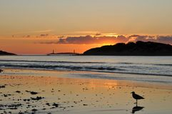 Sunrise at Good Harbor Beach. Sunrise at Gloucester's Good Harbor Beach with the twin lights at Thacher's Island in the background stock photography