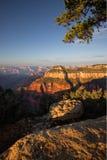 Sunrise Grand Canyon Stock Images
