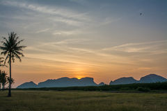 Sunrise at grass filed in Samroiyod nation park,  Thailand Royalty Free Stock Photography