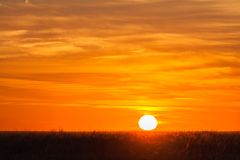 A sunrise on the grasslands Stock Images