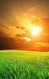Sunrise in grean meadow Stock Images