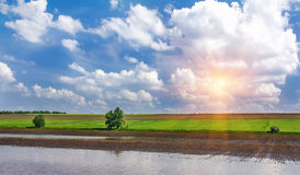 Sunrise in the green field with blue clouds Stock Photo