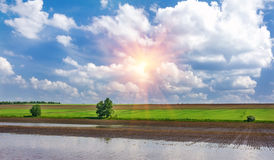 Sunrise in the green field with blue clouds Stock Photography
