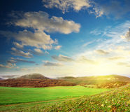 Sunrise in green meadow Royalty Free Stock Photo
