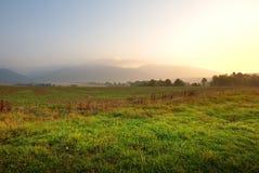 Sunrise on green meadows Stock Image