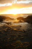 Sunrise at Halona Beach Hawaii Stock Photography