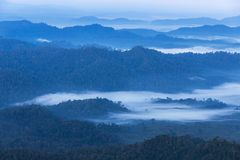 Sunrise on high angle view with white fog in early morning over rainforest mountain Stock Image