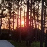 Sunrise at Holland royalty free stock photography