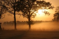 Sunrise in Hoogeloon. Watery sunrise in Hoogeloon, foggy meadow, trees, orange glow Royalty Free Stock Photo